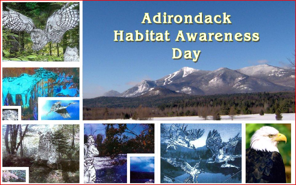 Adirondack Habitat Awareness Day