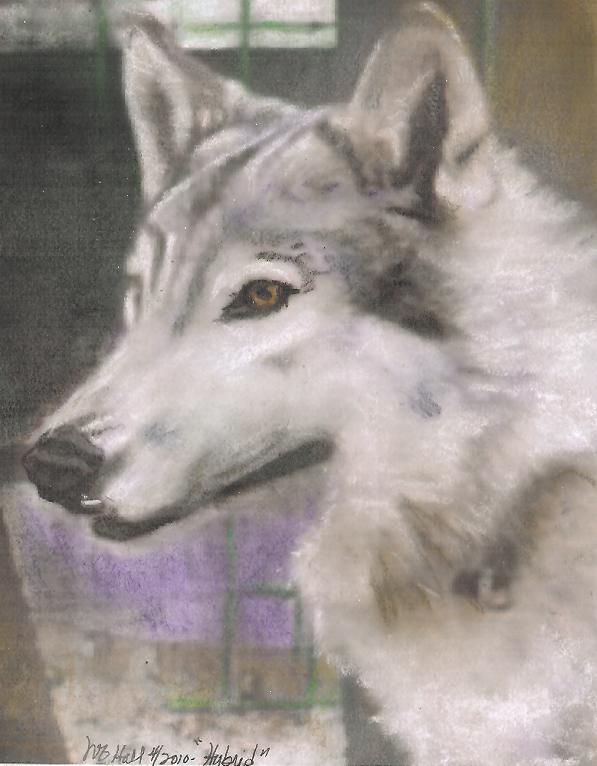 Cree, pastel by Wendy
