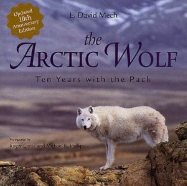 The Arctic Wolf by Dave Mech