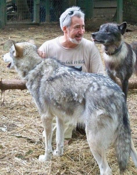 Steve with Cree and Zeebie, August 2011