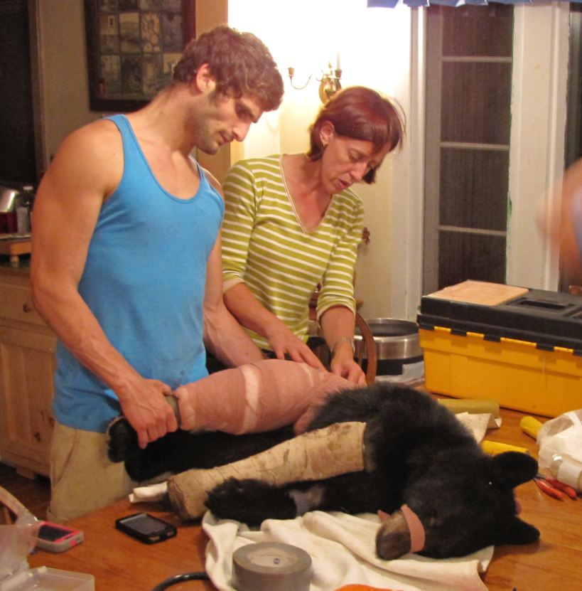Dr. Kate Donis and Alex with injured bear cub