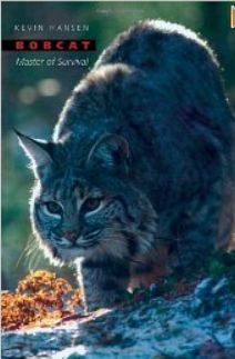 Bobcat: Master of Survival