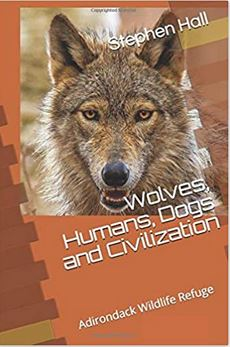 Wolves, Humans, Dogs and Civilization