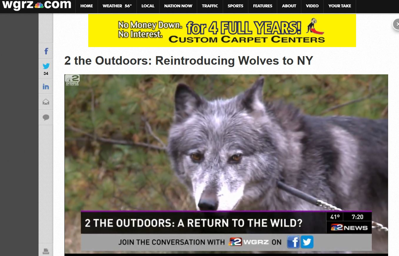 Steve & WEndy discuss Adirondack Wolf Reintroduction