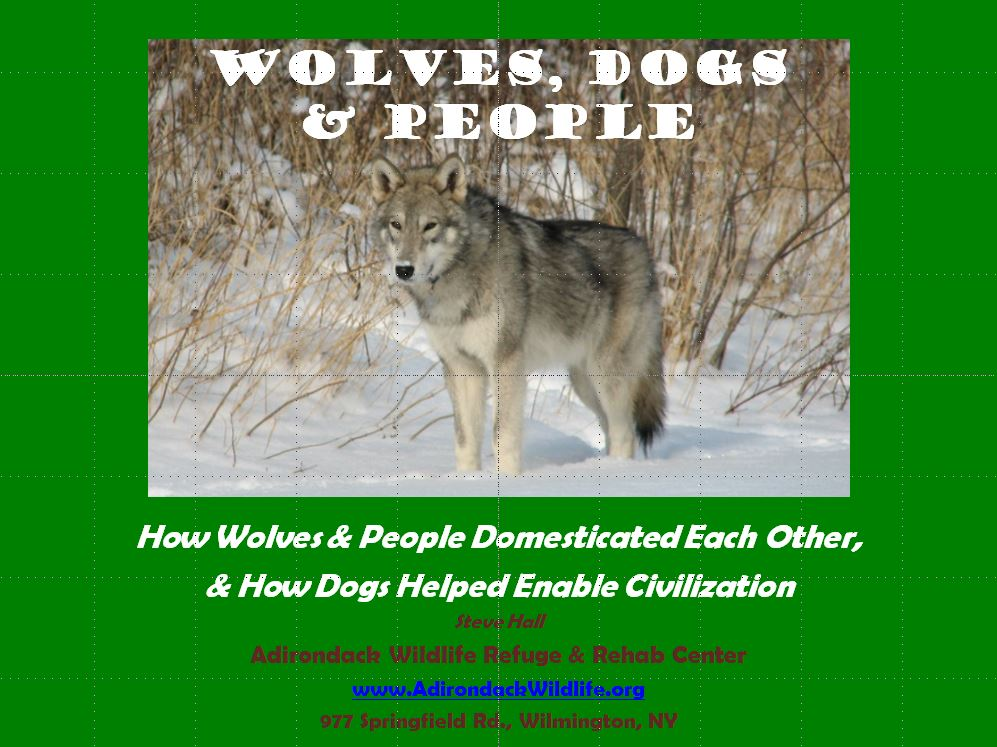 Wolves, Dogs and People