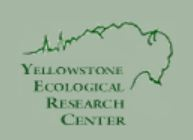 Yellowstone Ecological Research